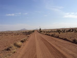 The long desert road