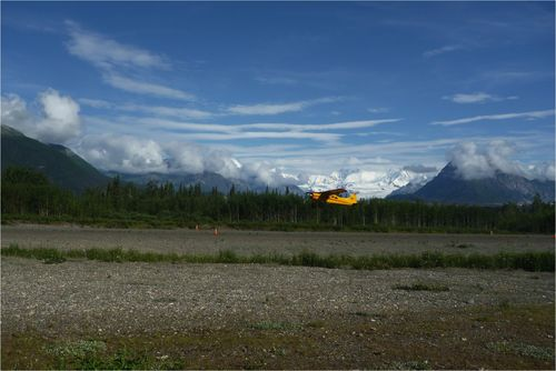 Bush flight take off