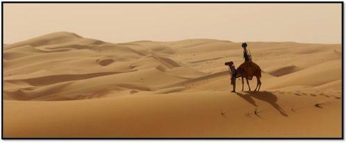 Camel Treker