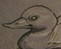 Ducktowater